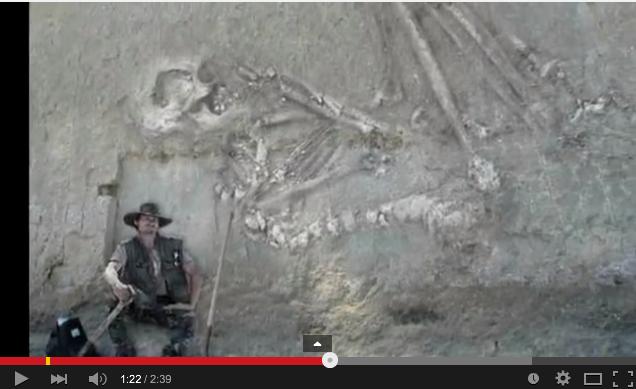 「2008年6月14日岩手・宮城内陸地震震度6強」発生!:一関の崖で巨人化石が見つかっていた!?_e0171614_16185676.png
