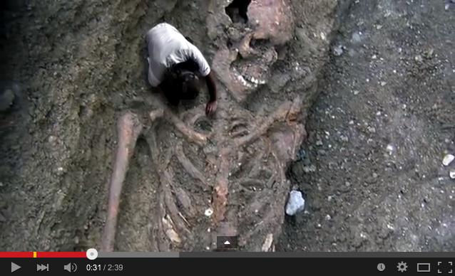 「2008年6月14日岩手・宮城内陸地震震度6強」発生!:一関の崖で巨人化石が見つかっていた!?_e0171614_1618615.png