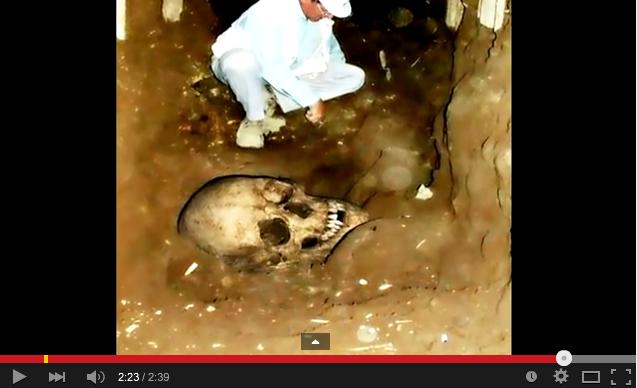 「2008年6月14日岩手・宮城内陸地震震度6強」発生!:一関の崖で巨人化石が見つかっていた!?_e0171614_1620454.png