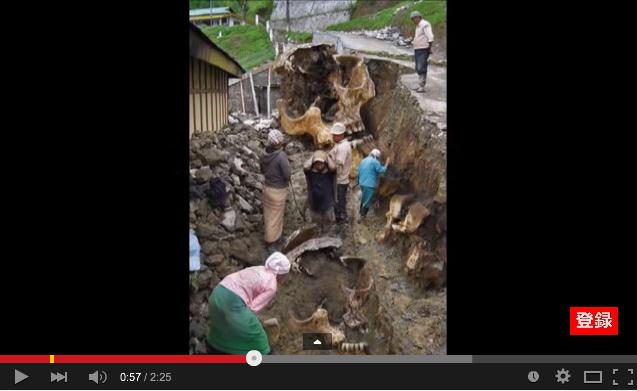 「2008年6月14日岩手・宮城内陸地震震度6強」発生!:一関の崖で巨人化石が見つかっていた!?_e0171614_1694139.png