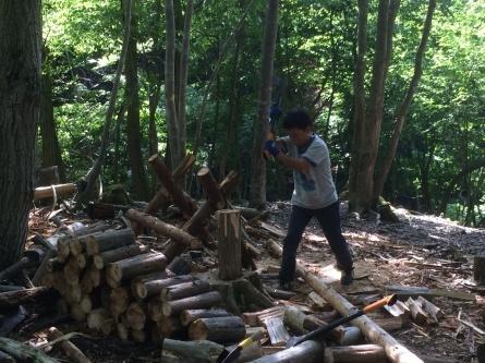 今日はリスの森へ!_f0101226_22191789.jpg