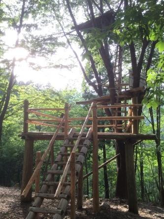 今日はリスの森へ!_f0101226_22231512.jpg