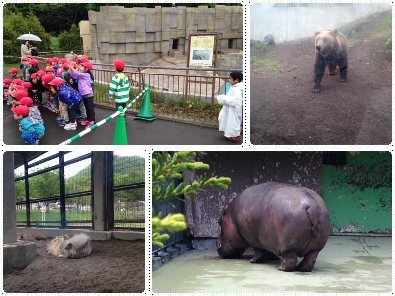 札幌円山動物園_b0236665_05555031.jpg
