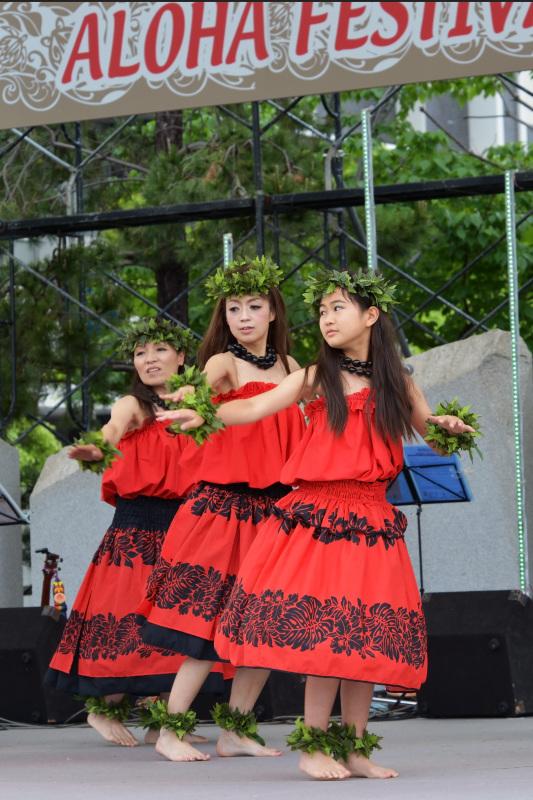 AloFes in takamatsu 2015 たっきーフラスタジオ ③_d0246136_14575162.jpg