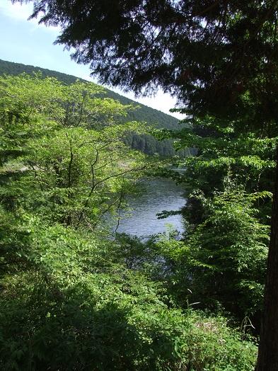 田貫湖ファミリーウォーキング大会_b0089338_10521038.jpg