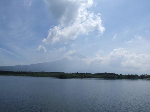 田貫湖ファミリーウォーキング大会_b0089338_10582079.jpg