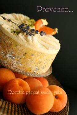 Pâtissière Yuka お菓子アルバム Ⅱ-⑤ 「Provence」_c0138180_11541789.jpg