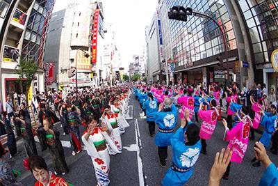 第18回渋谷・鹿児島おはら祭_b0056983_19111392.jpg