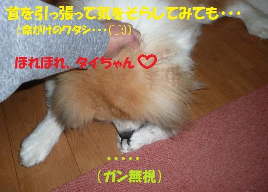f0121712_15501119.jpg