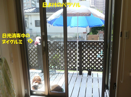 f0121712_16211498.jpg