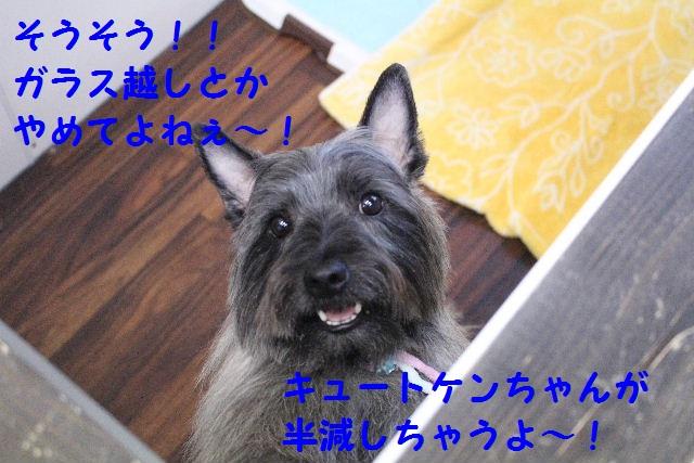 b0130018_14101870.jpg