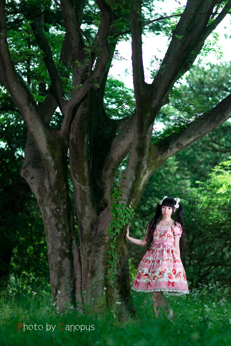森の妖精_e0196140_23264439.jpg