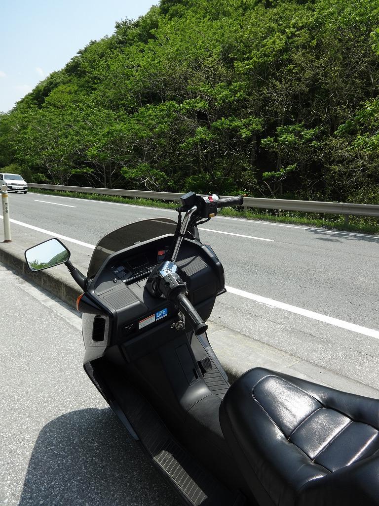 バイクで帰青!【5/14】 三陸被災地巡り~仙台の夜_d0061678_1243564.jpg