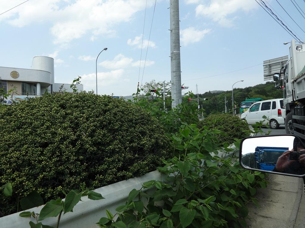 バイクで帰青!【5/14】 三陸被災地巡り~仙台の夜_d0061678_1391638.jpg