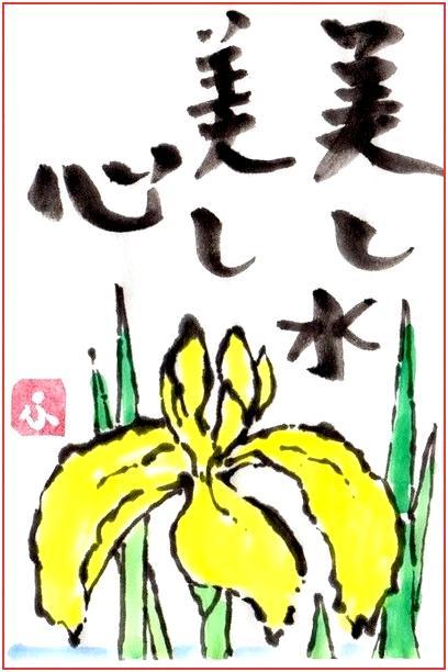 絵 手 紙 ( 黄しょうぶ ) 909_b0104092_17321369.jpg