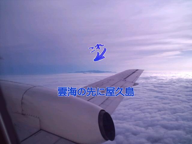 f0042295_185336.jpg