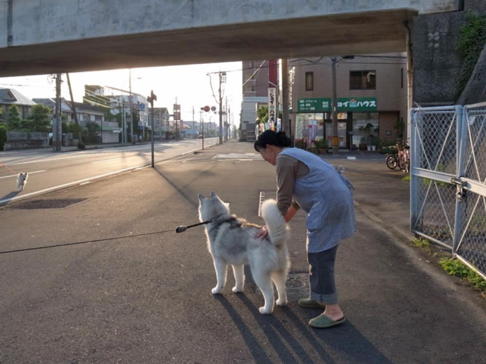 充実のお散歩? (^o^)_c0049299_22464360.jpg