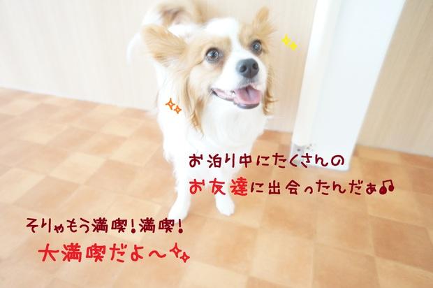 d0220513_1730851.jpg