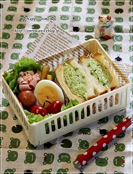 角食で沼サン弁当とバラ☆ピエールドロンサール♪_f0348032_17520933.jpg