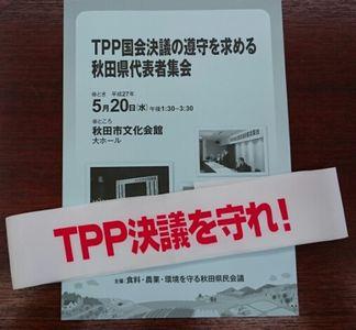 TPP国会決議_f0081443_23102015.jpg