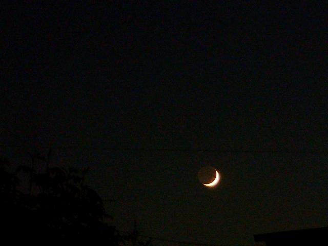 雨上がりの三日月と金星_f0079085_229572.jpg