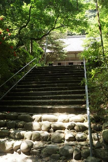 鹿児島大学水産学部訪問、大隅半島を訪ねて・・・研究調査_d0181492_16472555.jpg