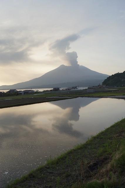 鹿児島大学水産学部訪問、大隅半島を訪ねて・・・研究調査_d0181492_1762425.jpg