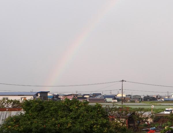 ちょっと薄いけど、虹が出たよ~~♪_a0136293_17425126.jpg