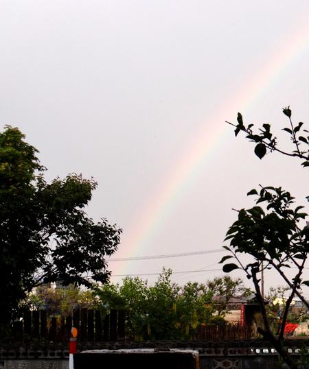 ちょっと薄いけど、虹が出たよ~~♪_a0136293_1742749.jpg