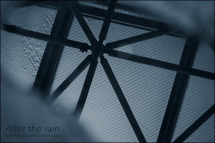 雨のち曇りのち晴れ_f0100215_19344249.jpg