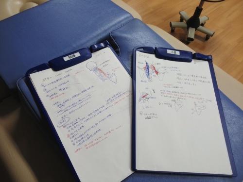 第31回 TOC体表解剖勉強会【肩甲挙筋】_b0329026_22105653.jpg