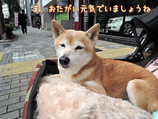 幼なじみ_c0062832_104142100.jpg