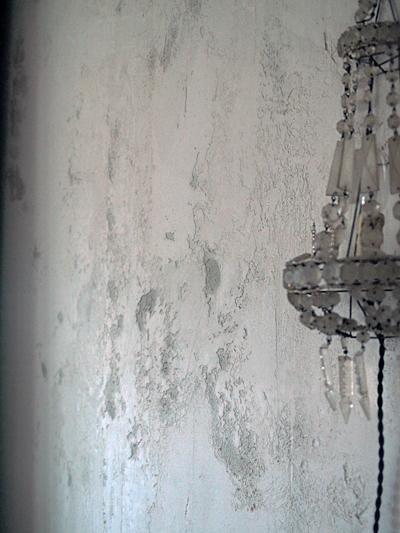 壁の塗装_e0172847_14461398.jpg