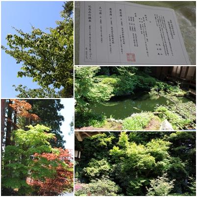 高野山_e0236480_23393947.jpg