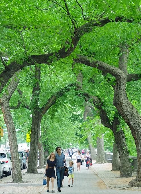 新緑の緑の美しいNYの美術館通り(Museum Mile)、6/9に恒例のフェスティバルも_b0007805_11231646.jpg