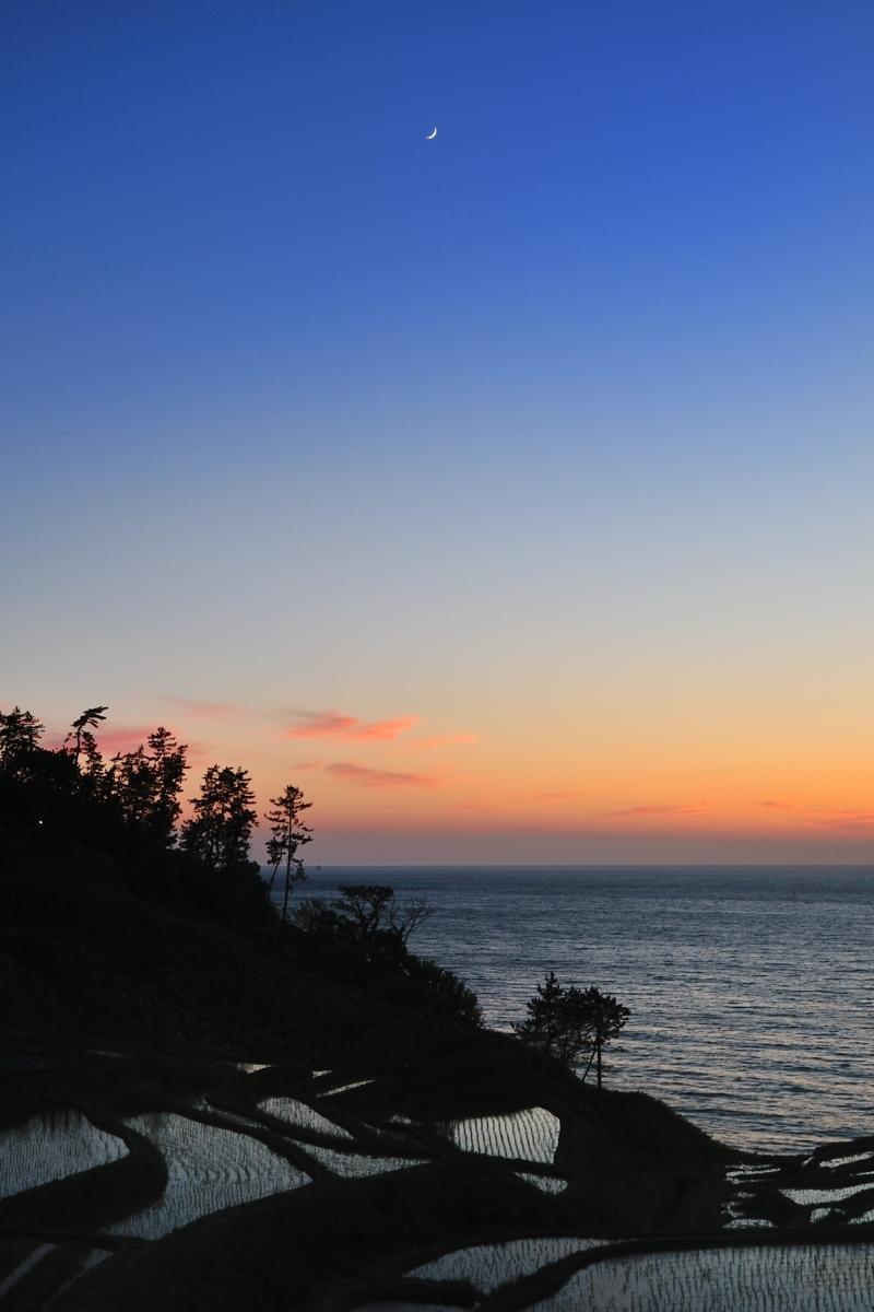 千枚田に花と月とハート型_c0220824_09530403.jpg
