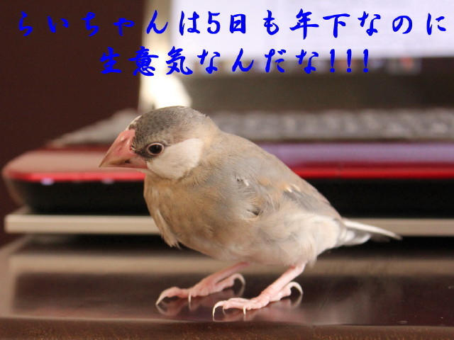 c0365734_20245882.jpg