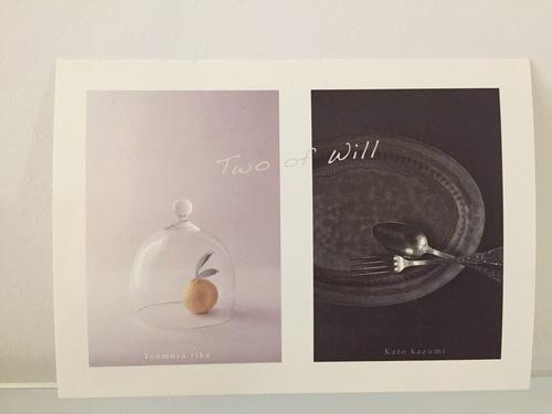 6月の展示 Tsumura↔kato_e0288544_11112723.jpg
