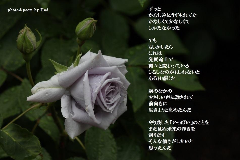 f0351844_10511426.jpg