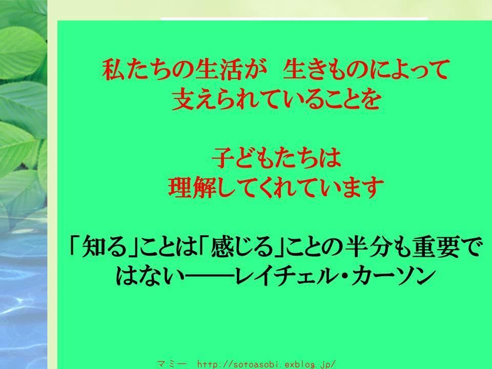 d0105749_19575816.jpg