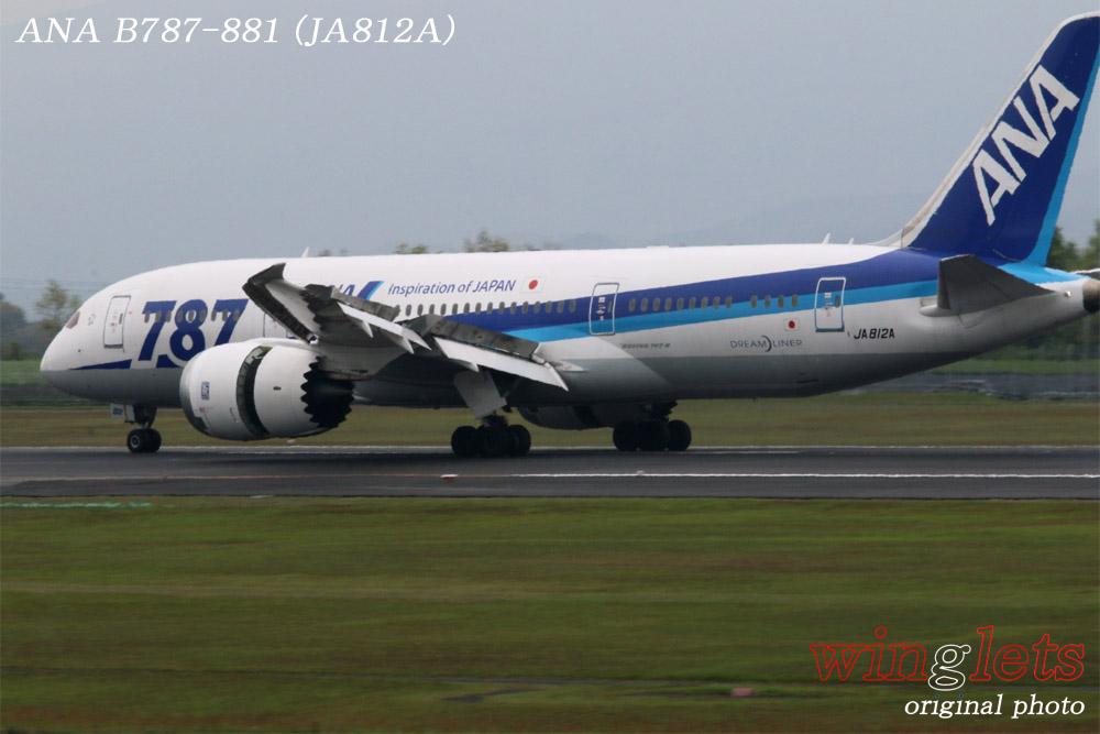 '15年 鹿児島空港レポート・・・ANA/JA812A_f0352866_15204835.jpg