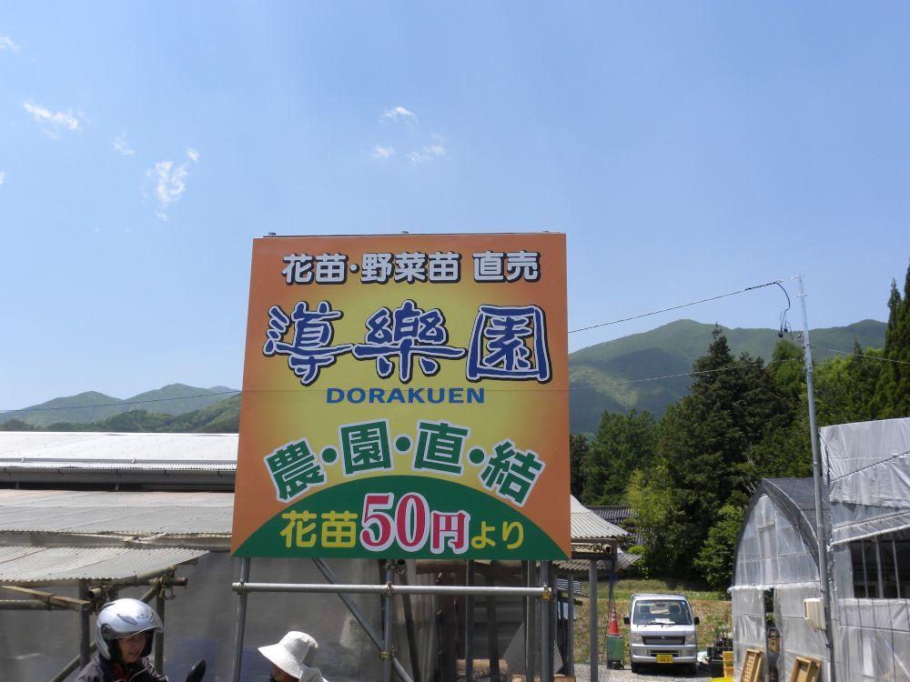 杉島名物・ドーナツ万十(まんじゅう)_b0329588_16212109.jpg