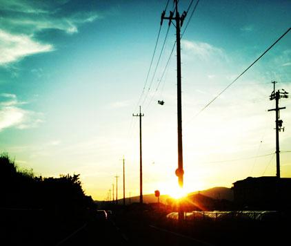 今日は県西へ_f0043592_9104986.jpg