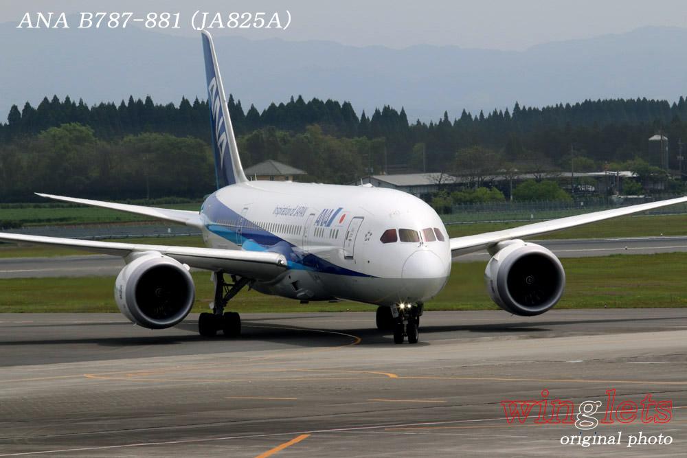 '15年 鹿児島空港レポート・・・ANA/JA825A_f0352866_21261923.jpg