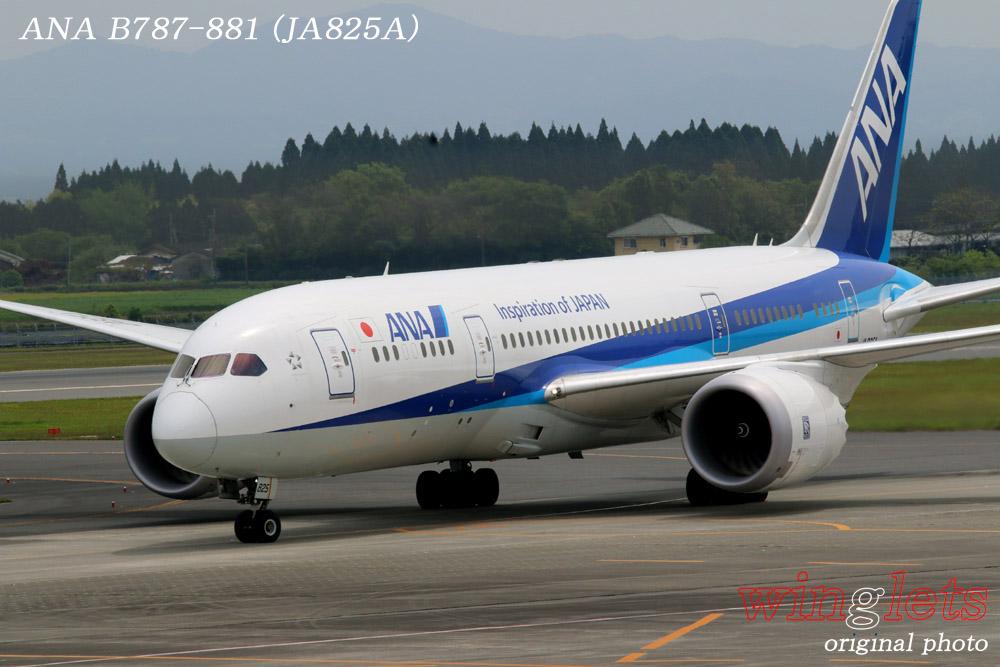 '15年 鹿児島空港レポート・・・ANA/JA825A_f0352866_21262997.jpg
