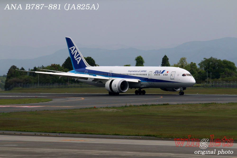 '15年 鹿児島空港レポート・・・ANA/JA825A_f0352866_2126745.jpg