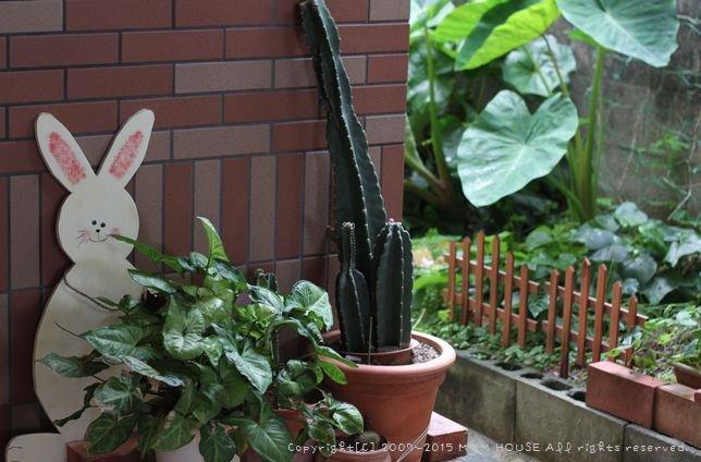 庭仕事と週末ごはん♪_c0139375_23485343.jpg