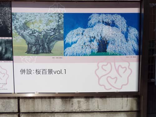 ぐるっとパス No.5・6 郷さくら美と五島美術館まで見たこと_f0211178_1542316.jpg
