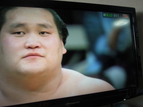 大相撲5月場所 優勝は照ノ富士_e0116211_20215438.jpg