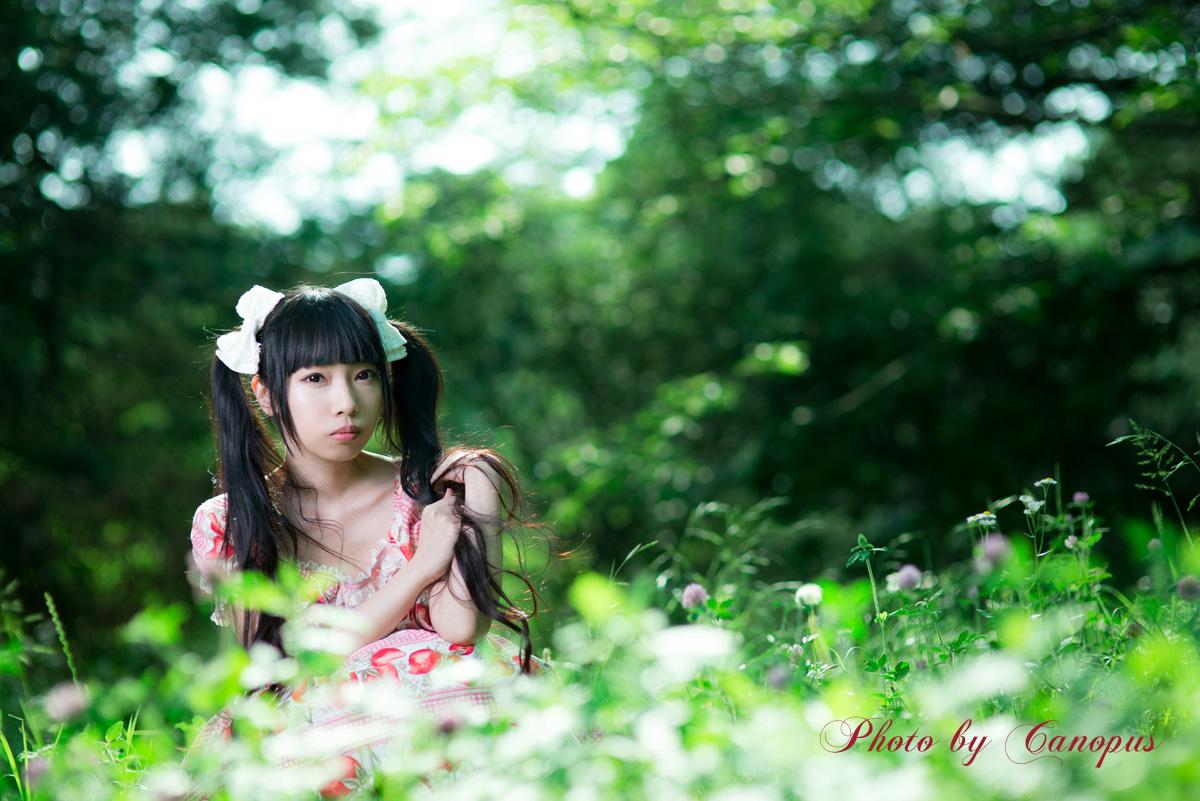 続・森の妖精_e0196140_23475068.jpg
